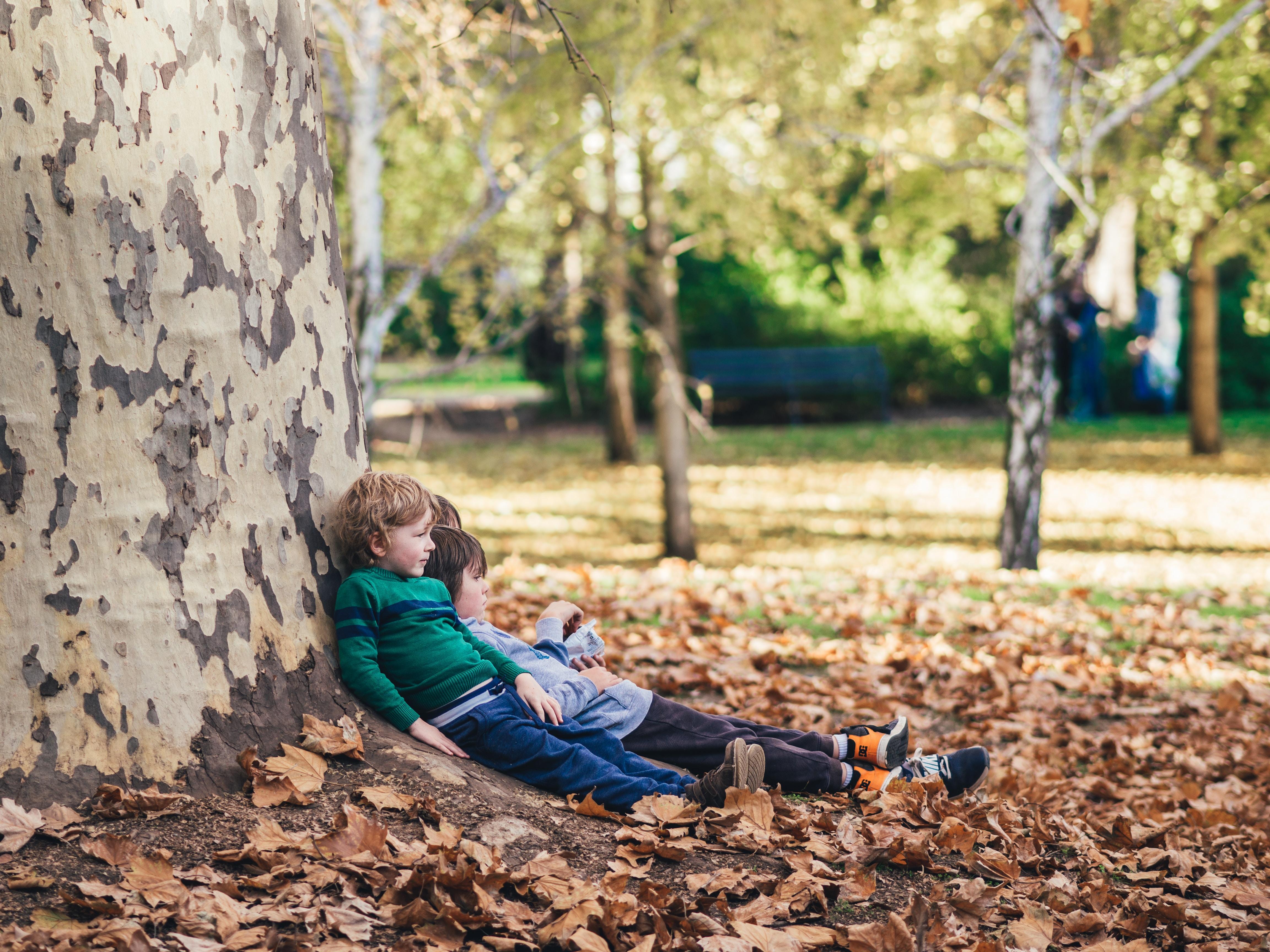 kids leaning on tree
