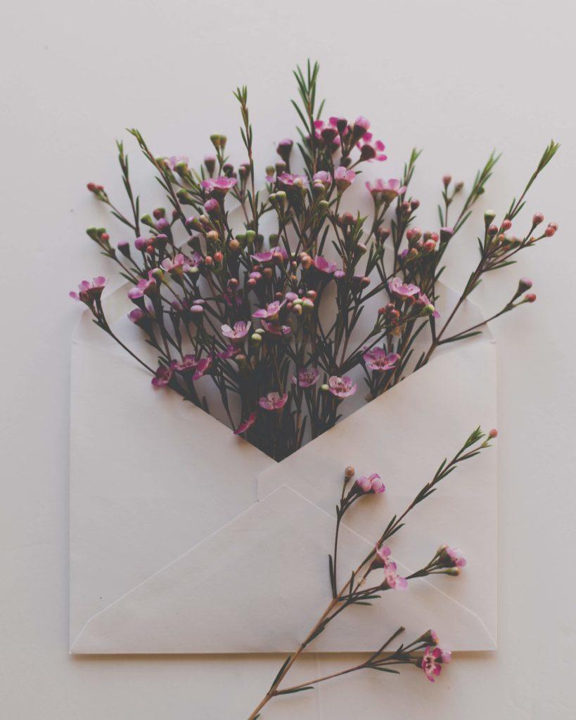 Blumen in einem Briefumschlag