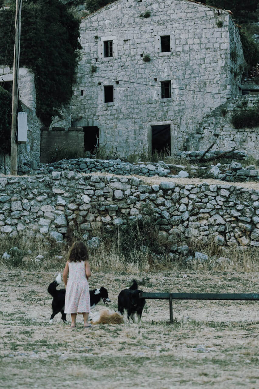 Girl with dogs in Montenegro