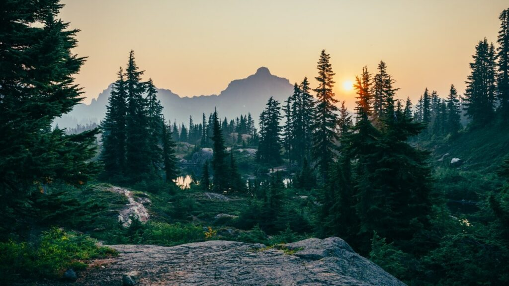 sunset with mountain and forest trees