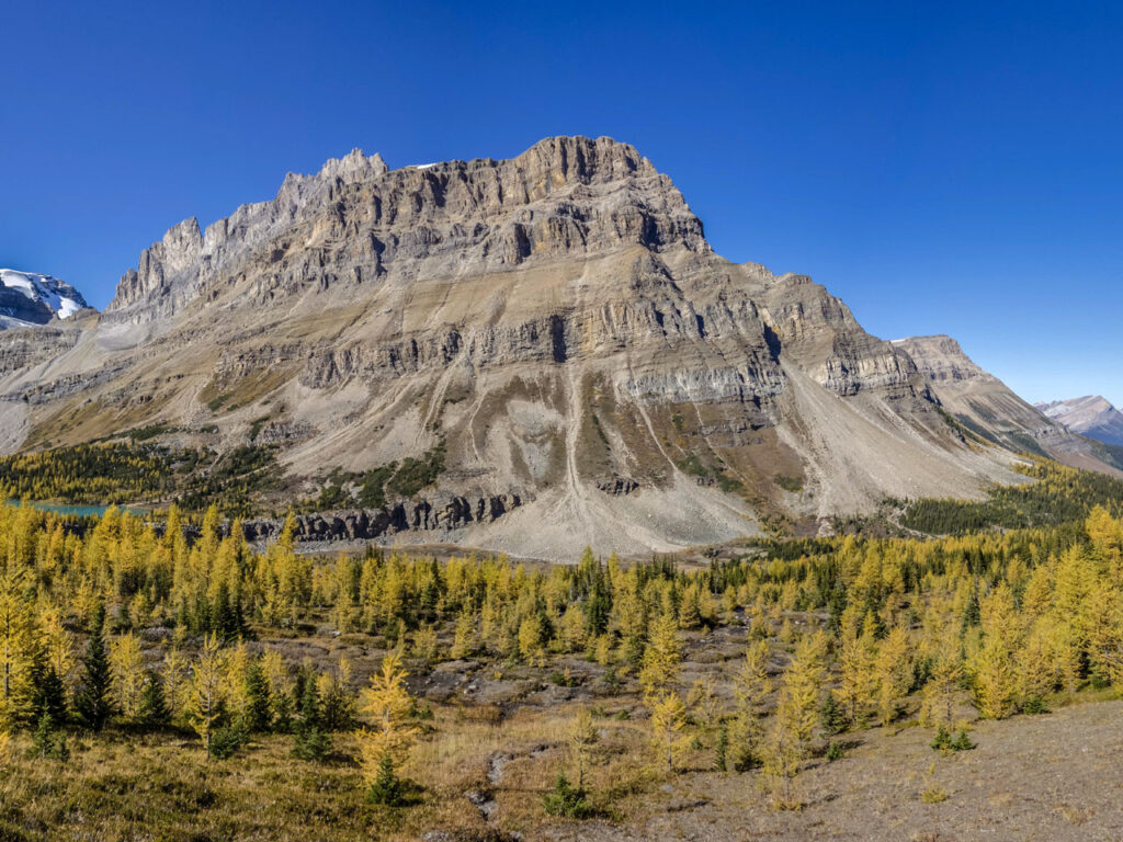 majestic Canadian Rocky Mountains