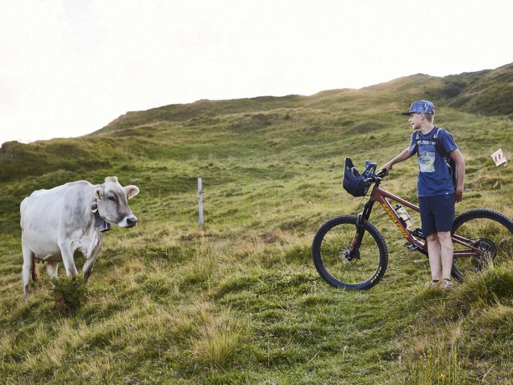 Junge mit Mountainbike trifft Kuh