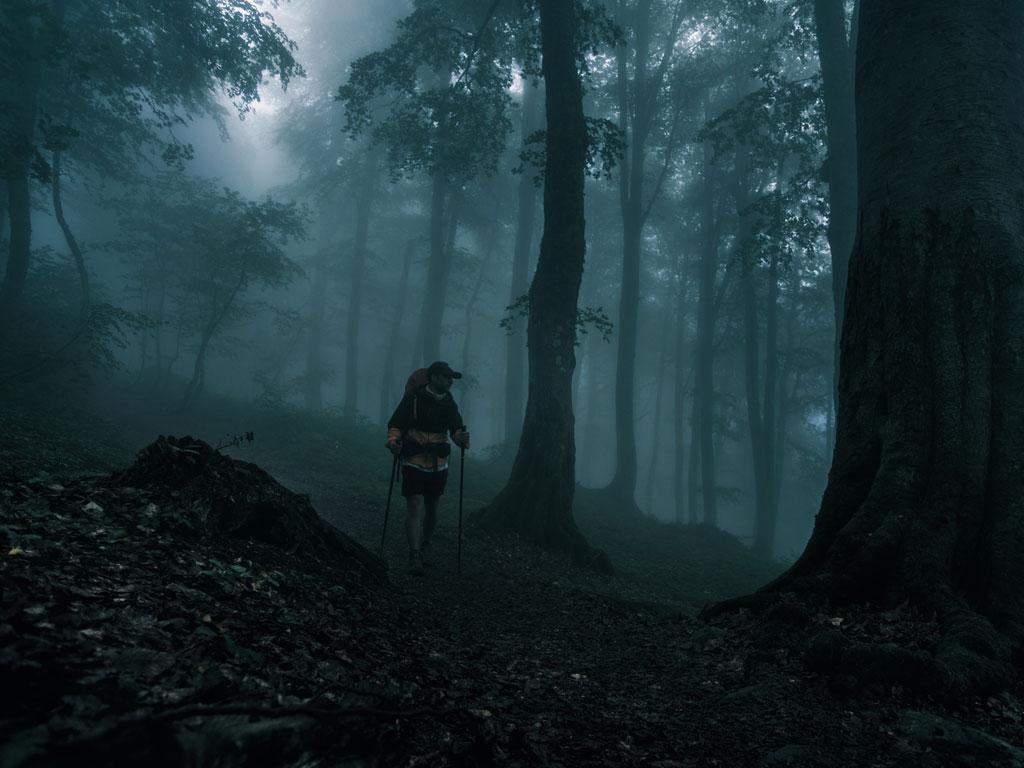 hiker alone in the dark woods