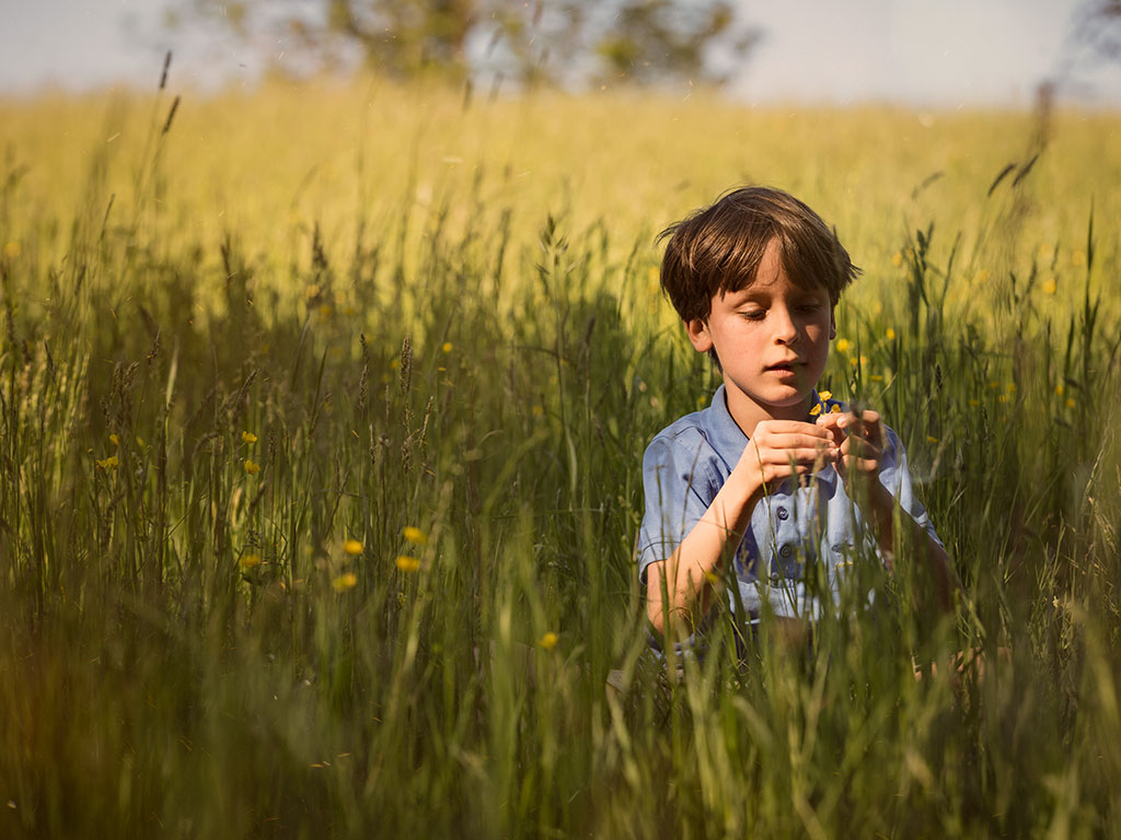 nature is the best playground for kids, young boy in a field holding small flowers